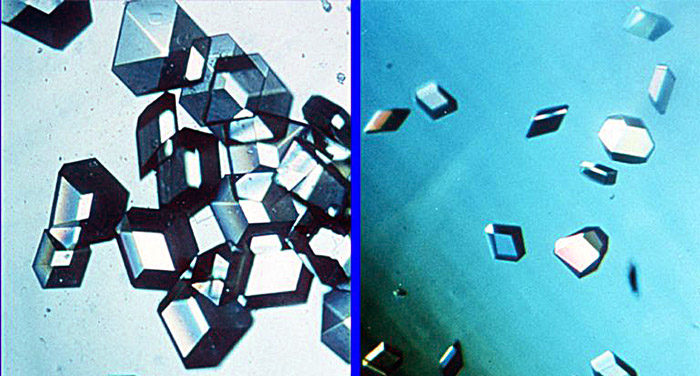 Insulin Crystals -- comparison of samples made in space and on Earth