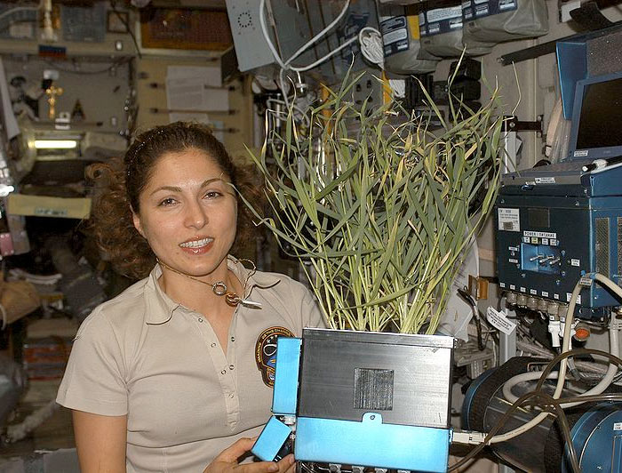 citizen astronaut Anousheh Ansari aboard the International Space Station