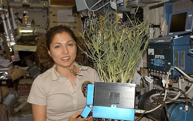 Citizen space explorer Anousheh Ansari aboard the International Space Station